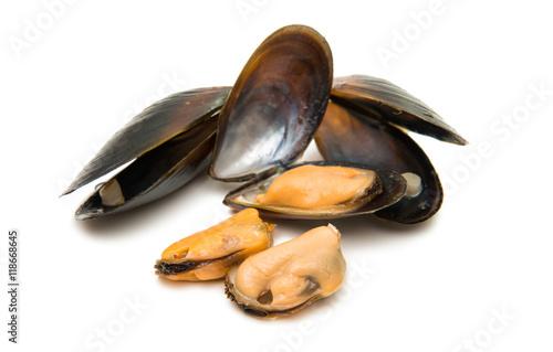 Fotobehang Schaaldieren mussels isolated