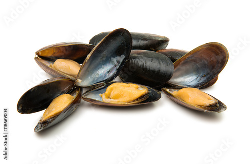 Staande foto Schaaldieren mussels isolated