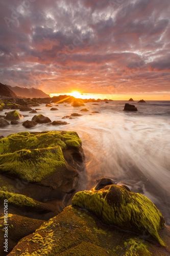 Fotografia  Teneriffa - Kanarische Inseln - Spanien