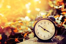 Old Alarm Clock Between Yellow...