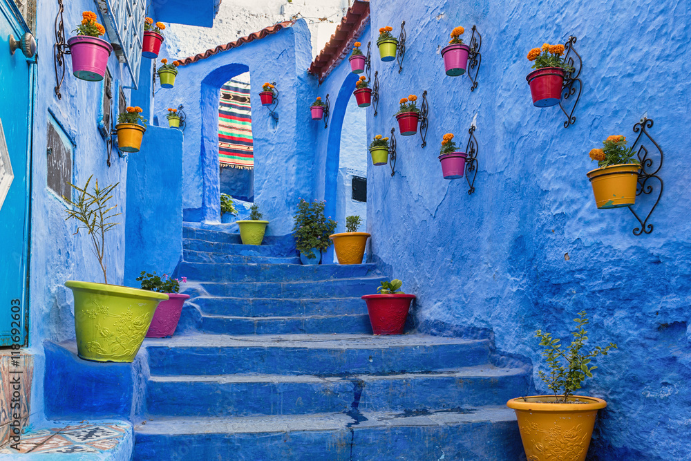 Fototapety, obrazy: Blue staircase and wall decorated with colourful flowerpots, Chefchaouen medina in Morocco.