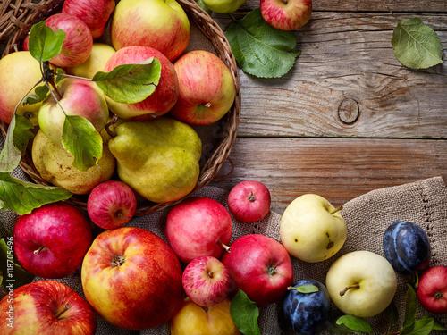 Poster Vruchten beautiful autumn fruits