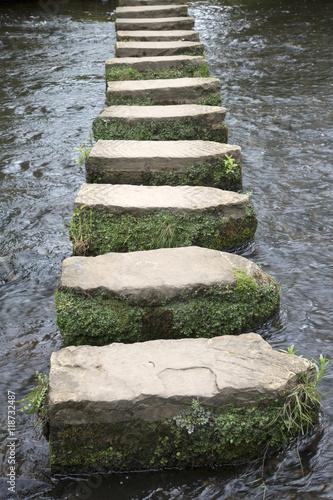 Fotografie, Obraz  Stepping Stones, Lealholm, North York Moors, Yorkshire