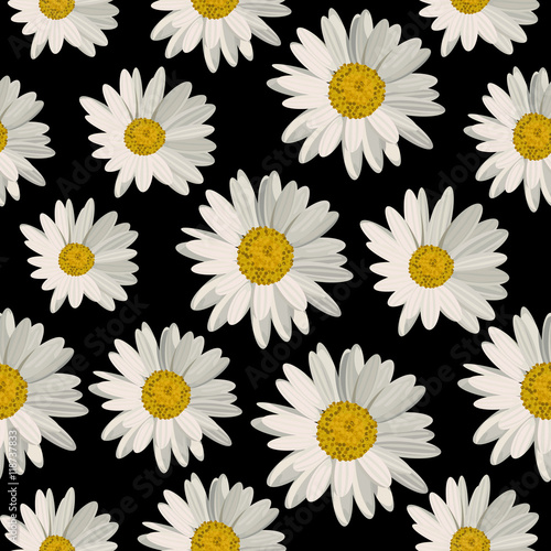 Fotografija Seamless pattern with daisy flowers