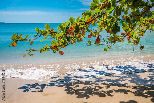 Foto op Plexiglas Indonesië Beautiful tropical island beach