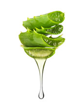 Essence From Aloe Vera Plant Dripping From Leaves On White