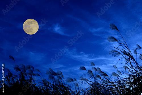 Zdjęcie XXL Obraz księżycowy Susuki i księżyc