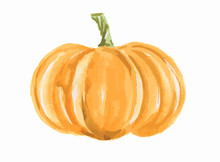 Isolated Watercolor Pumpkin. F...