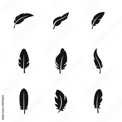 Feather vector icons Wall mural