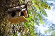 Old Wooden Birdhouse Tied Into The Tree