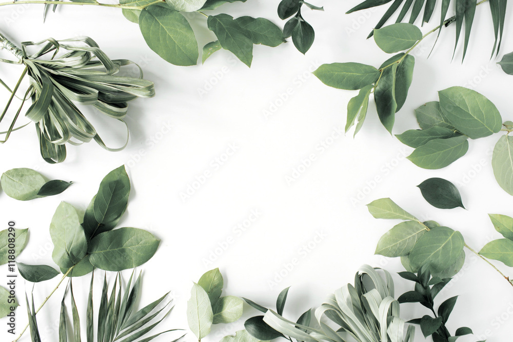 Fototapety, obrazy: frame with flowers, branches, leaves and petals isolated on white background. flat lay, overhead view