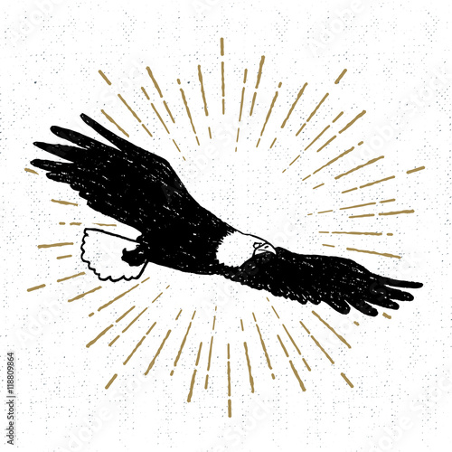 Poster Aigle Hand drawn tribal icon with a textured eagle vector illustration.