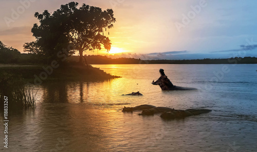 Hippopotamus  in the Nile river at sunrise at the Murchison Fall