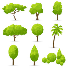 Set Of   Polygonal Trees