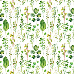 Panel Szklany Przyprawy Watercolor meadow weeds and herbs seamless pattern