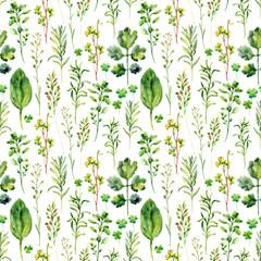FototapetaWatercolor meadow weeds and herbs seamless pattern