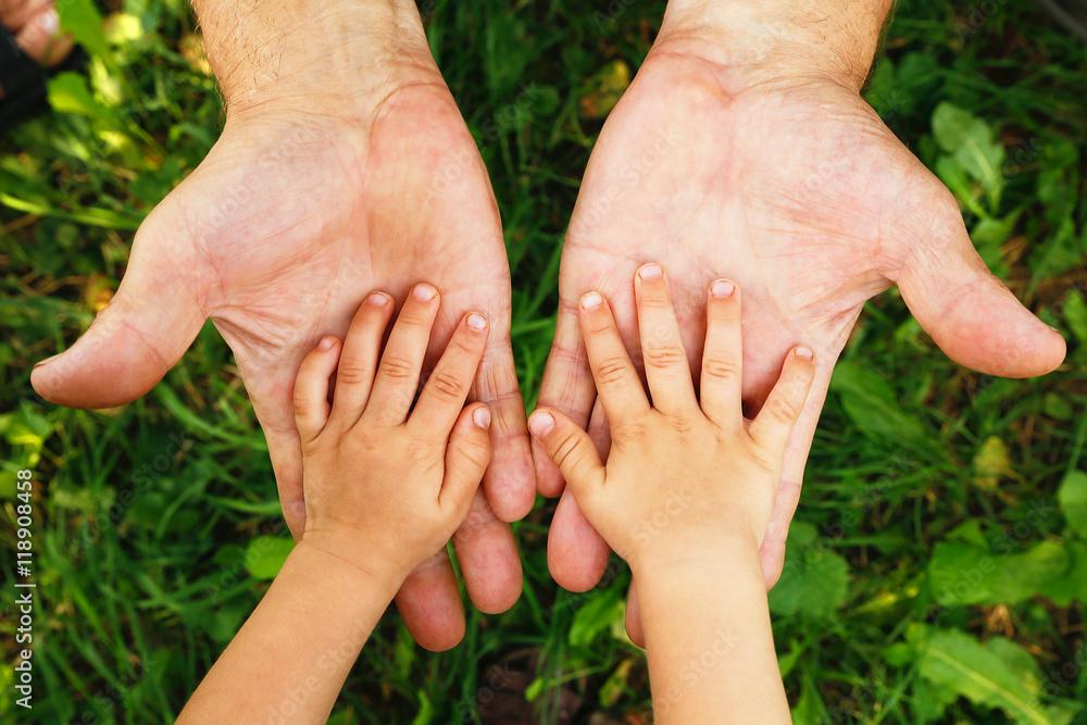 Fototapeta hands grandfather and grandson