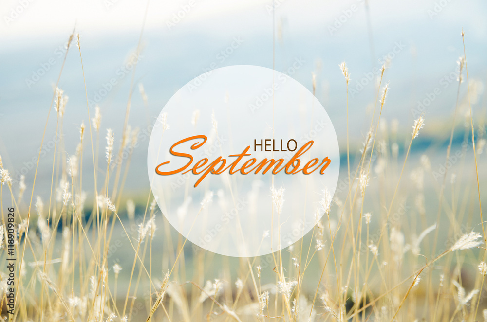 Fotografía Hello September Wallpaper Autumn Background With