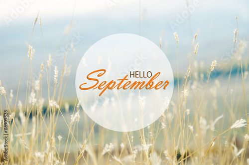 Hello September Wallpaper Autumn Background With Dried Plants