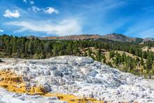 Mammoth Hot Springs Terrace Landscape