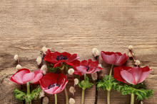 Red Anemones On Wooden Backgro...