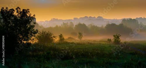 Obraz Early morning park - fototapety do salonu