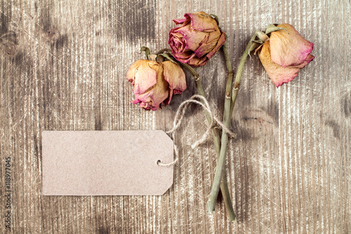 Fotografie, Tablou  Old roses and blank paper tag.