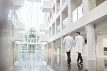 Rear View Of Doctors Talking A...