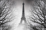 Fototapeta Paryż - Autumn in Paris - black and white picture. Mysterious picture.