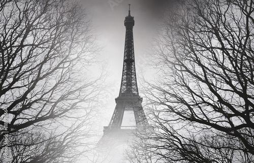 Papiers peints Paris Autumn in Paris - black and white picture. Mysterious picture.