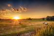 Sommer, Landschaft mit Sonnenuntergang