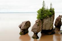 Hopewell Rocks - New Brunswick - Canada