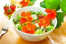 Salad Bowl Nasturtium Flowers ...