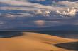 Sand dunes on the background of the desert lake. Gobi Desert