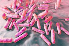 Propionibacterium Acnes, 3D Il...