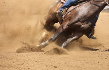 A Barrel Racing Horse Skids Ar...