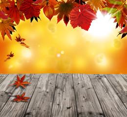 Naklejka na ściany i meble Autumn background with red falling