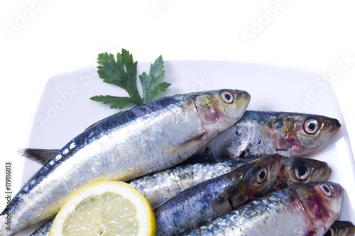 Photo  dish of sardines with parsley and lemon isolated