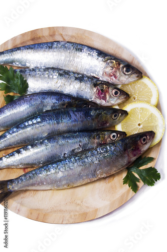 dish of sardines with parsley and lemon isolated Canvas Print