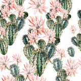 Akwarela wzór z kaktusem. - 119136637