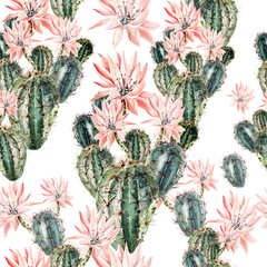 FototapetaWatercolor pattern with cactus .
