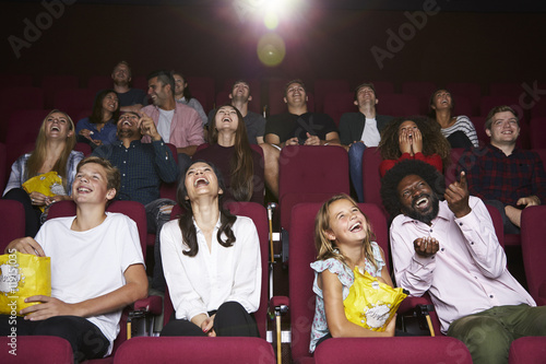 Fotografie, Tablou  Audience In Cinema Watching Comedy Film
