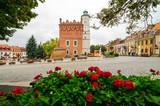 Fototapeta Miasto - Sandomierz - ratusz