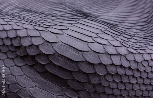 Fotografia Python snakeskin leather background, snake skin, texture, animal, reptile