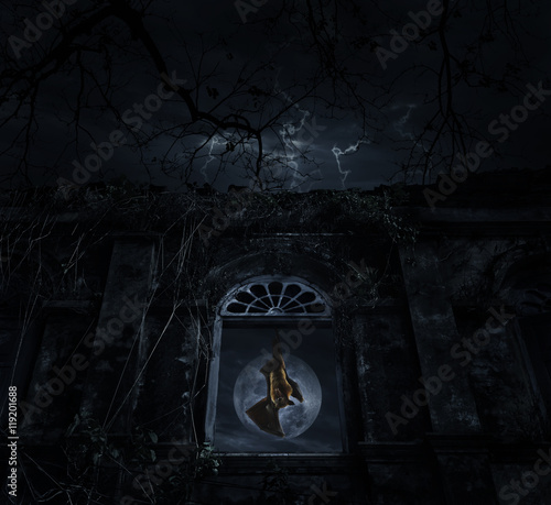 Bat scream and hang on old ancient window castle over dead tree,