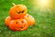 Ripe Pumpkins For Halloween On...