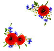 Leinwanddruck Bild - Frame of red poppies, cornflowers and chamomile on white background with space for text. Flat lay