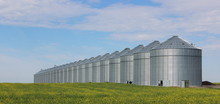 Group Of Silos In The Canadian Prairies