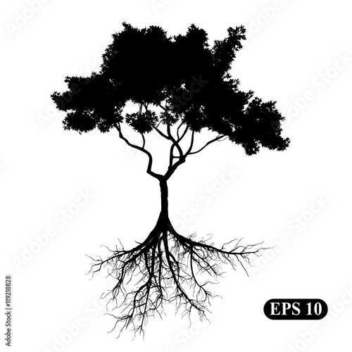 Tree with roots Canvas-taulu