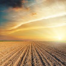 Dramatic Orange Sunset And Plowed Field